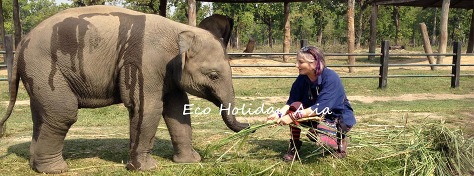 Playing-with-Baby-Elephant-in-Elephant-Breeding-center-Chitwan-Eco-Holiday-Asia